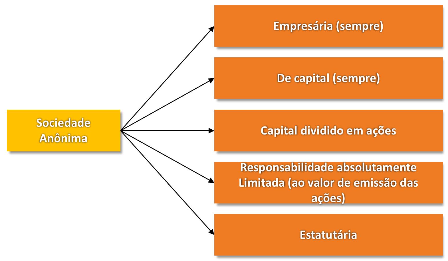Características da Sociedade Anônima